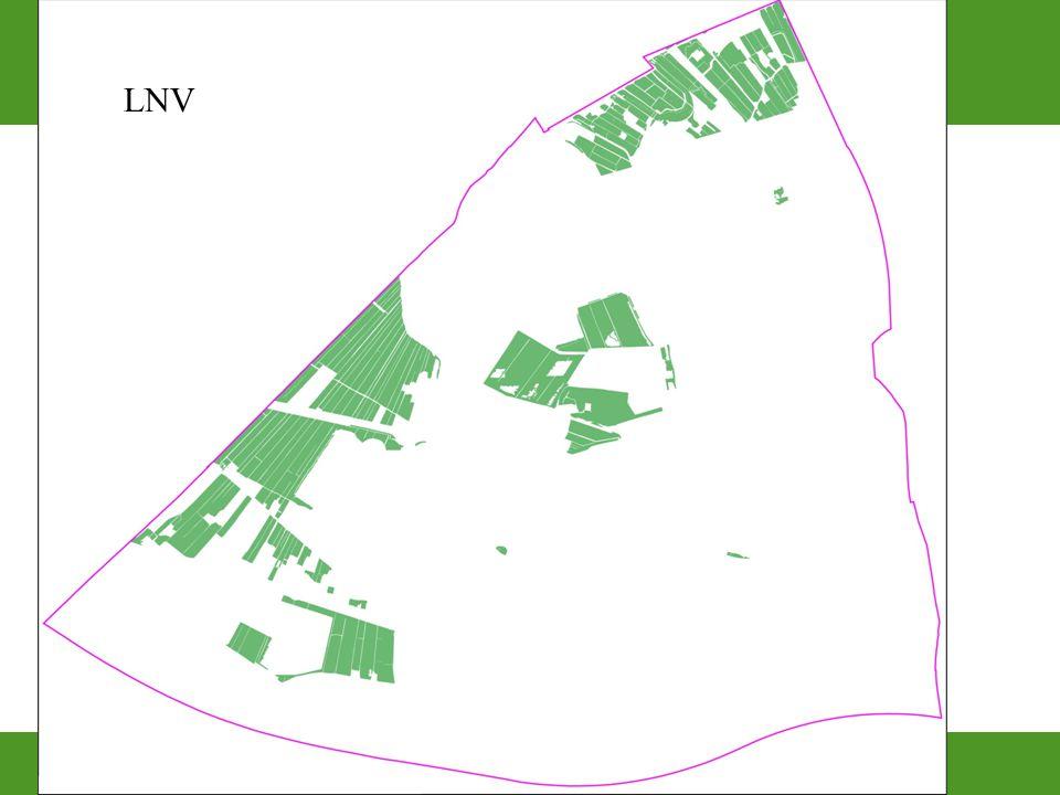 LNV 43