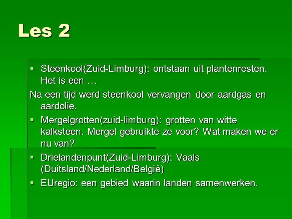 Les 2 Steenkool(Zuid-Limburg): ontstaan uit plantenresten. Het is een … Na een tijd werd steenkool vervangen door aardgas en aardolie.
