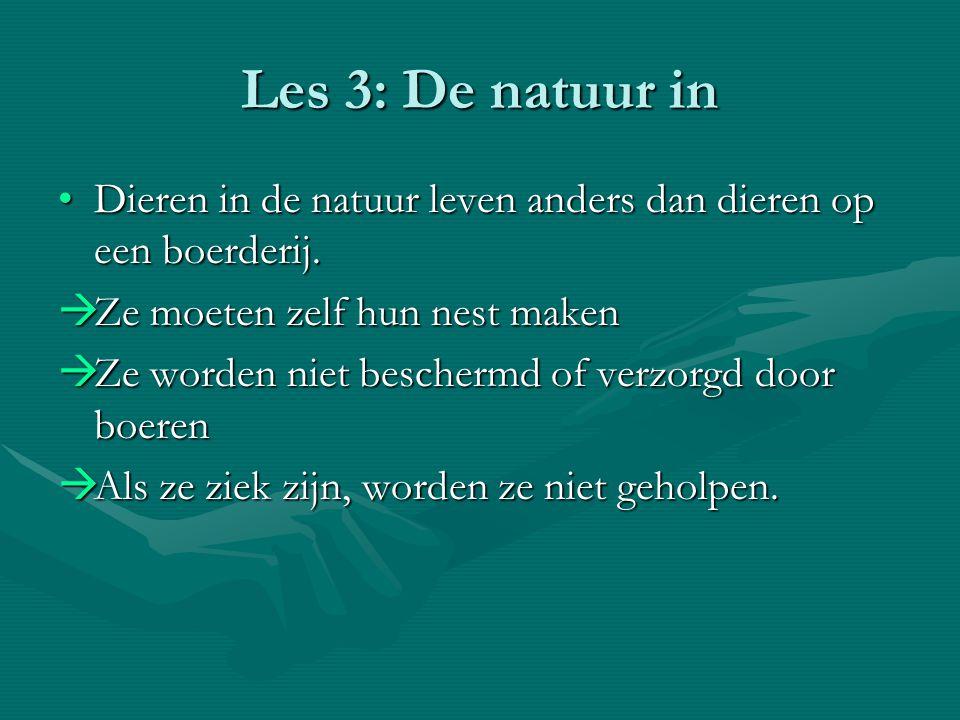Les 3: De natuur in Dieren in de natuur leven anders dan dieren op een boerderij. Ze moeten zelf hun nest maken.