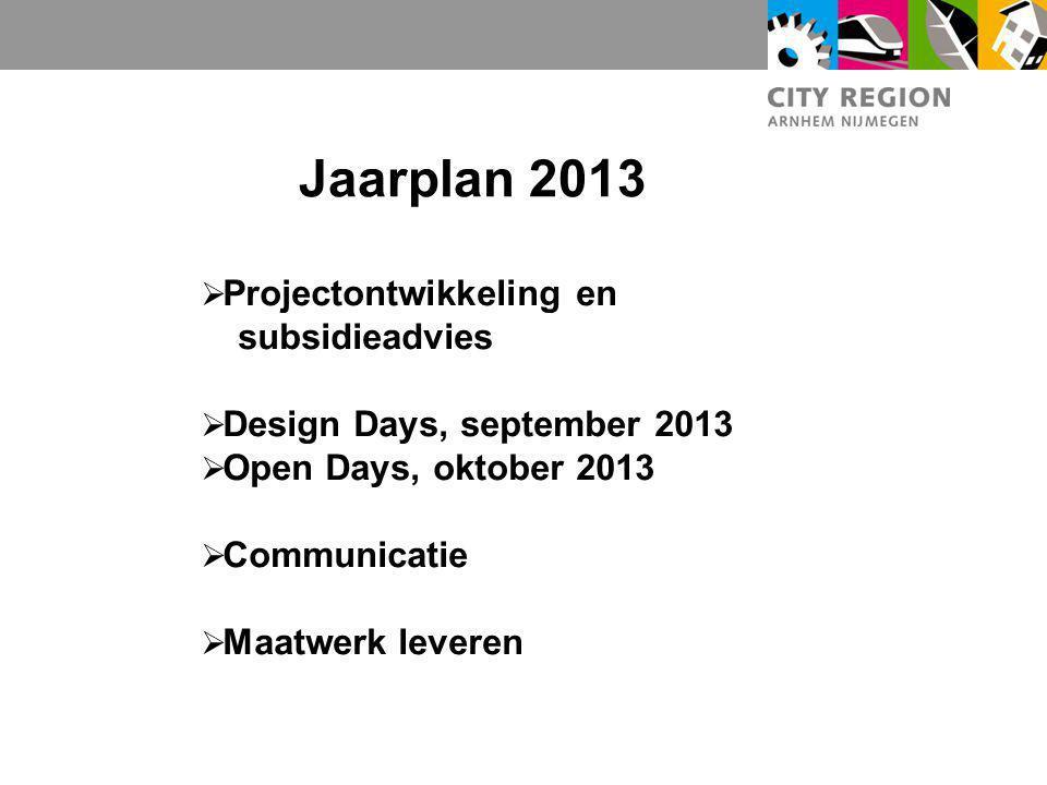 Jaarplan 2013 Projectontwikkeling en subsidieadvies