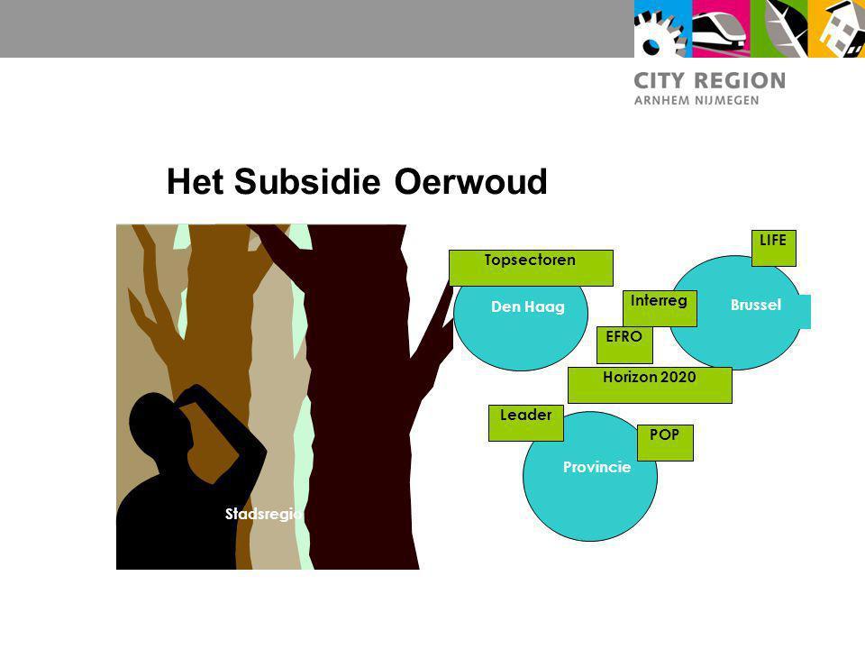 Het Subsidie Oerwoud LIFE Topsectoren Interreg Den Haag Brussel EFRO
