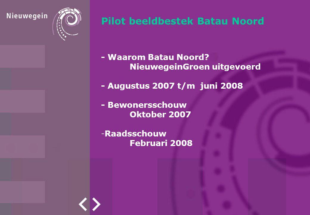 Pilot beeldbestek Batau Noord