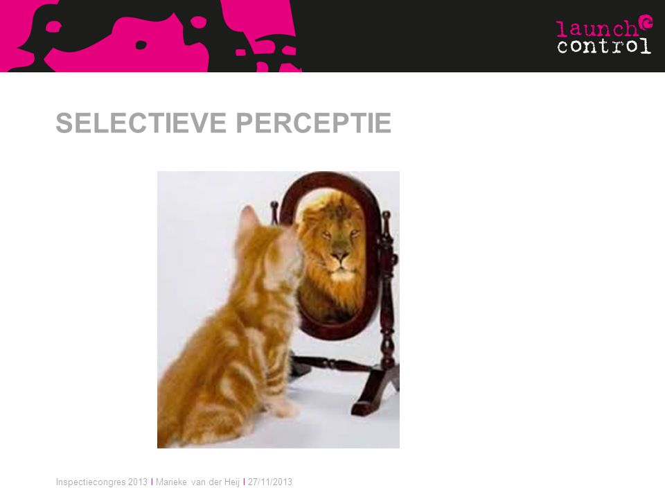 SELECTIEVE PERCEPTIE