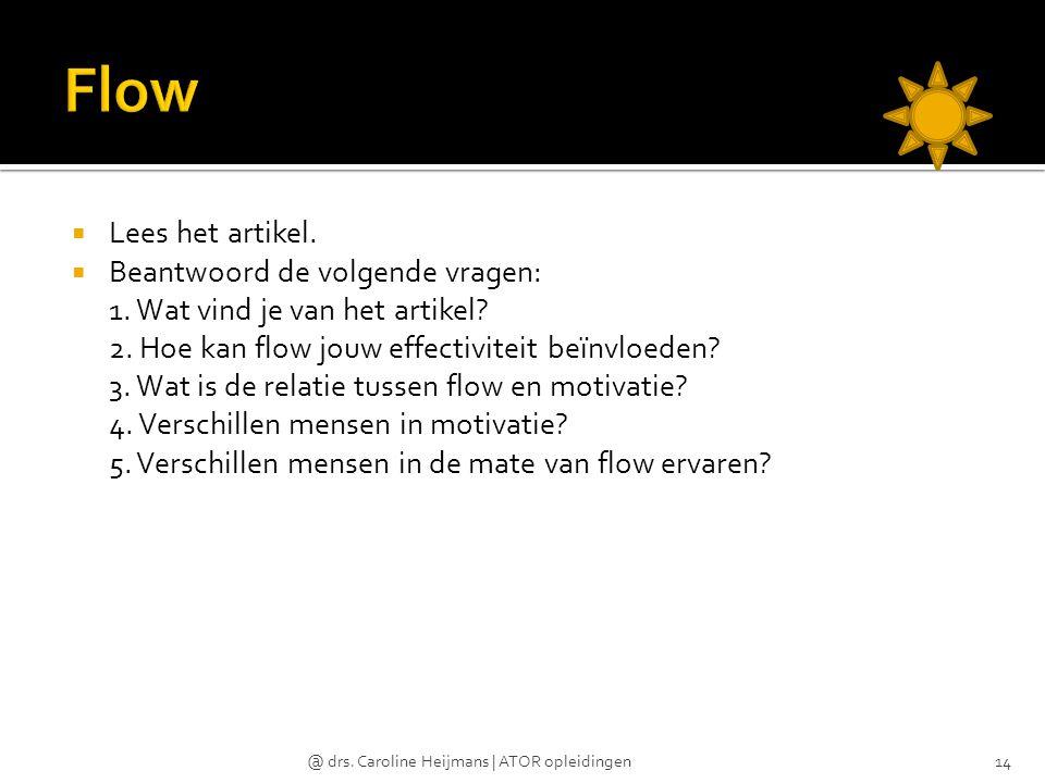Flow Lees het artikel. Beantwoord de volgende vragen:
