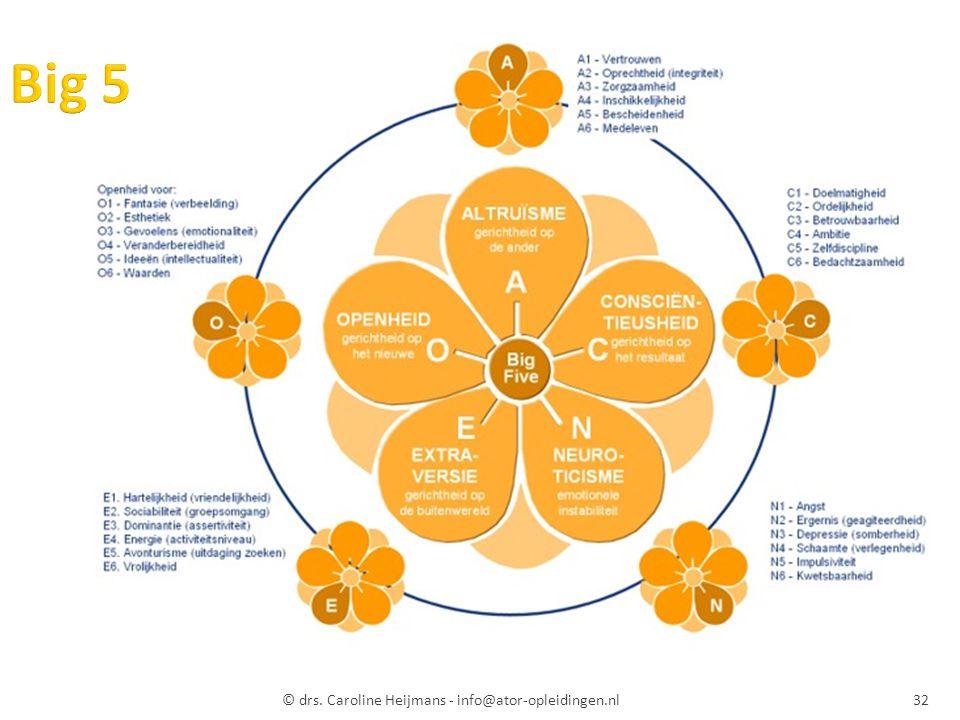 Big 5 © drs. Caroline Heijmans - info@ator-opleidingen.nl
