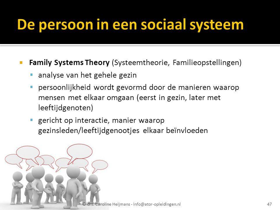 De persoon in een sociaal systeem