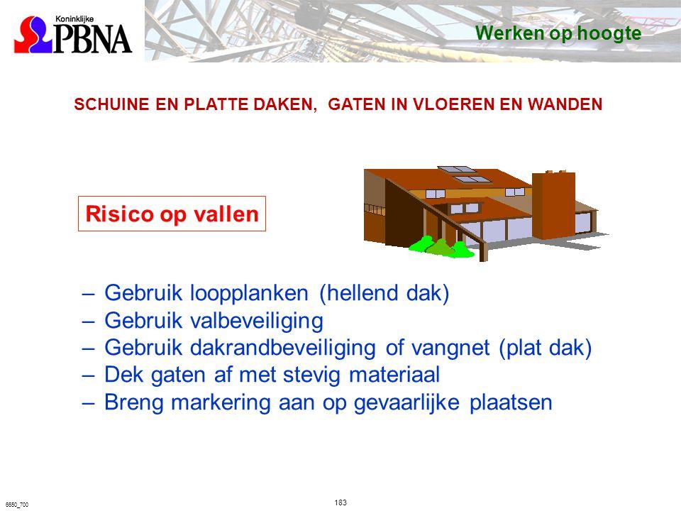 Gebruik loopplanken (hellend dak) Gebruik valbeveiliging