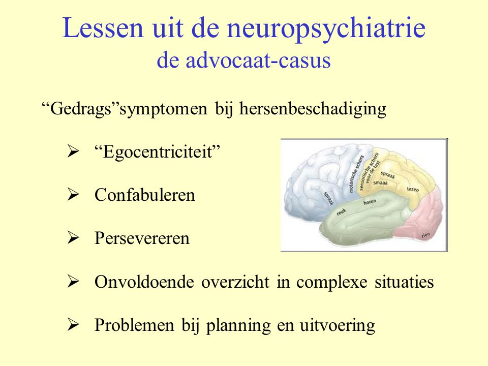 Lessen uit de neuropsychiatrie de advocaat-casus