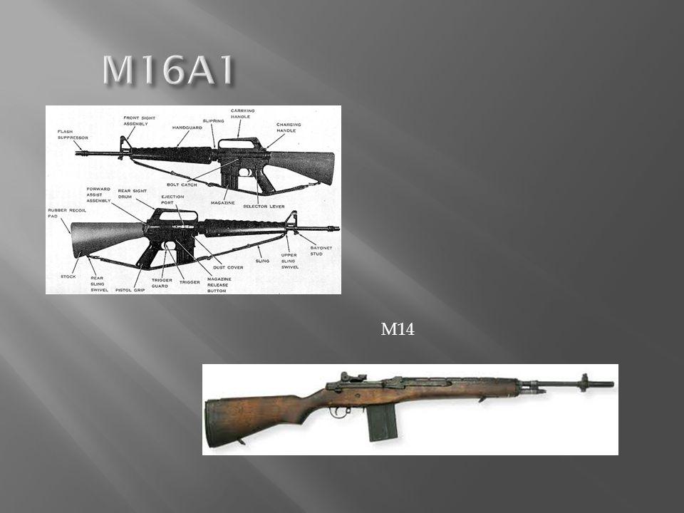 M16A1 M14