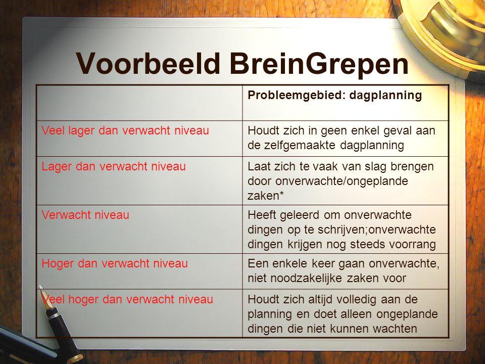 Voorbeeld BreinGrepen