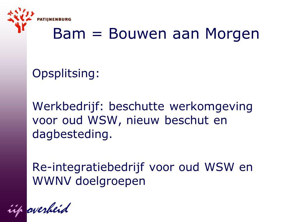 iip overheid Bam = Bouwen aan Morgen Opsplitsing: