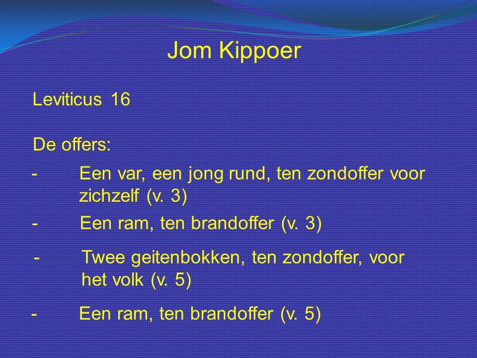 Jom Kippoer Leviticus 16 De offers: