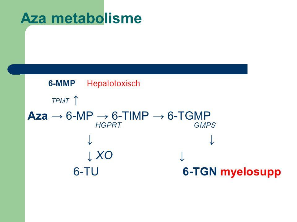 Aza metabolisme 6-MMP Hepatotoxisch TPMT ↑