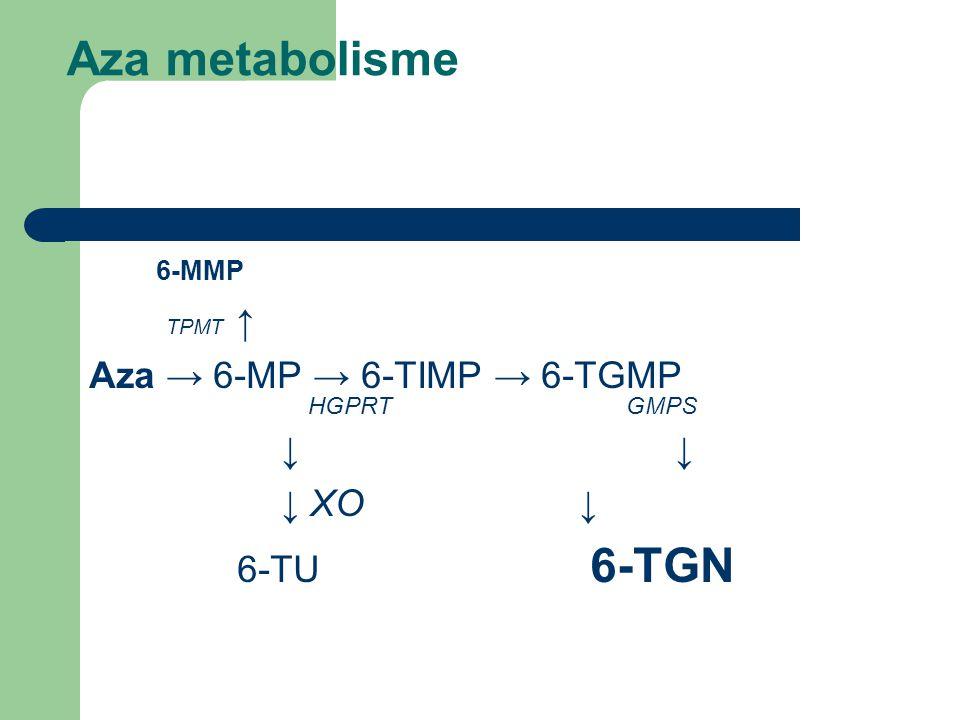 Aza metabolisme 6-MMP TPMT ↑ Aza → 6-MP → 6-TIMP → 6-TGMP HGPRT GMPS