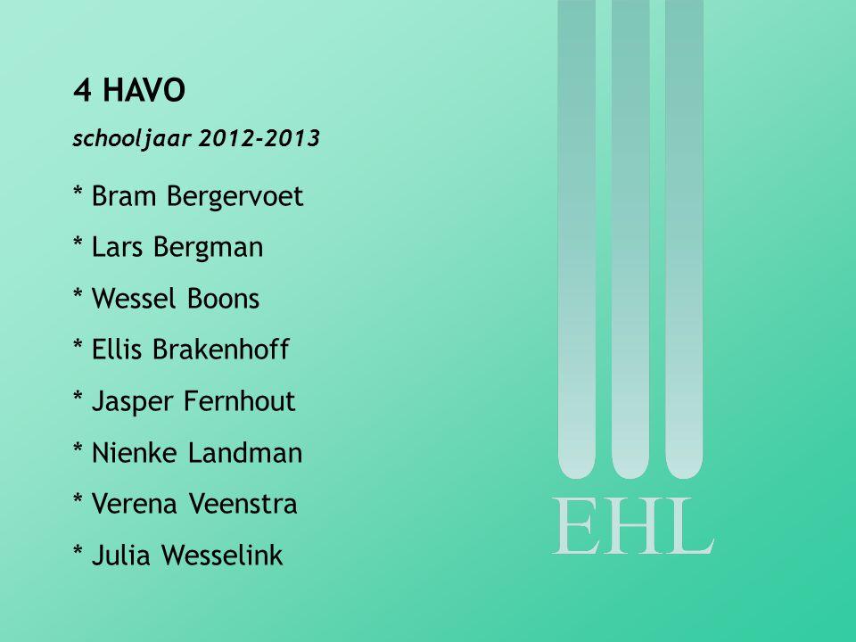 4 HAVO * Bram Bergervoet * Lars Bergman * Wessel Boons
