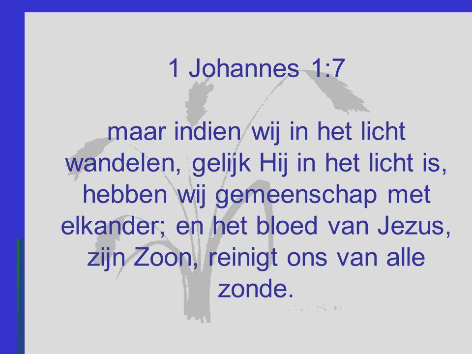 1 Johannes 1:7