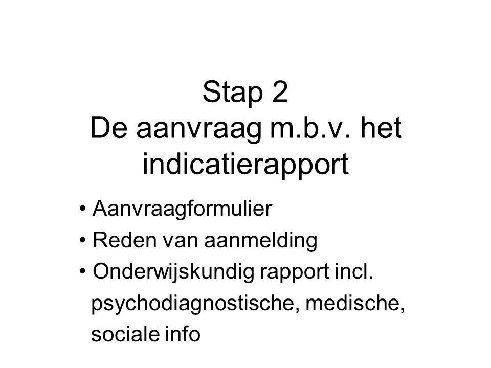 Stap 2 De aanvraag m.b.v. het indicatierapport