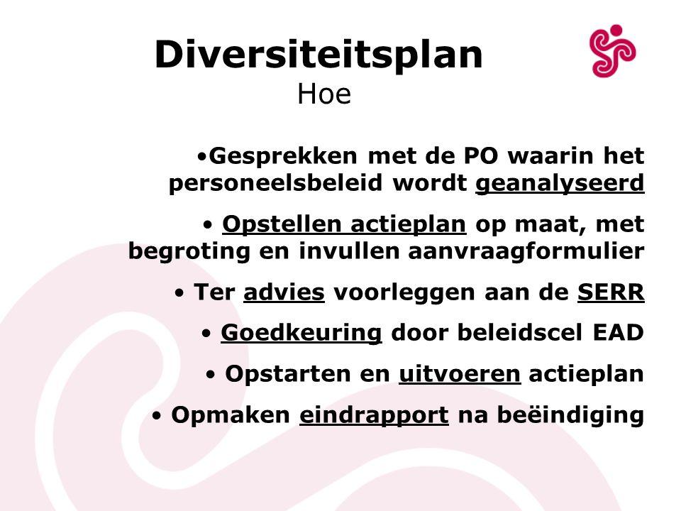 Diversiteitsplan Hoe. Gesprekken met de PO waarin het personeelsbeleid wordt geanalyseerd.
