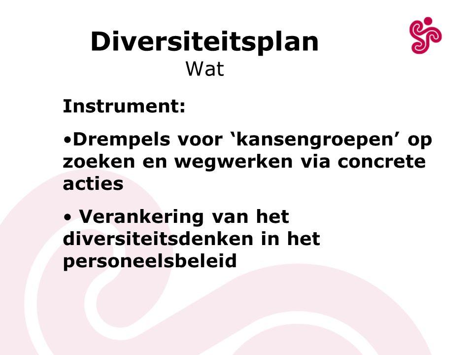 Diversiteitsplan Wat Instrument: