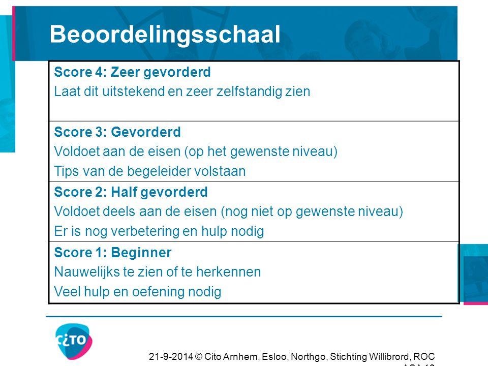 Beoordelingsschaal Score 4: Zeer gevorderd