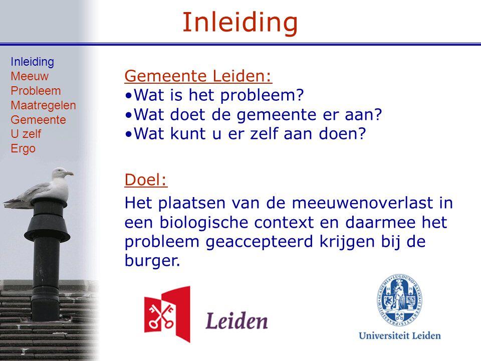 Inleiding Gemeente Leiden: Wat is het probleem