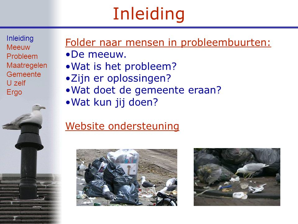 Inleiding Folder naar mensen in probleembuurten: De meeuw.