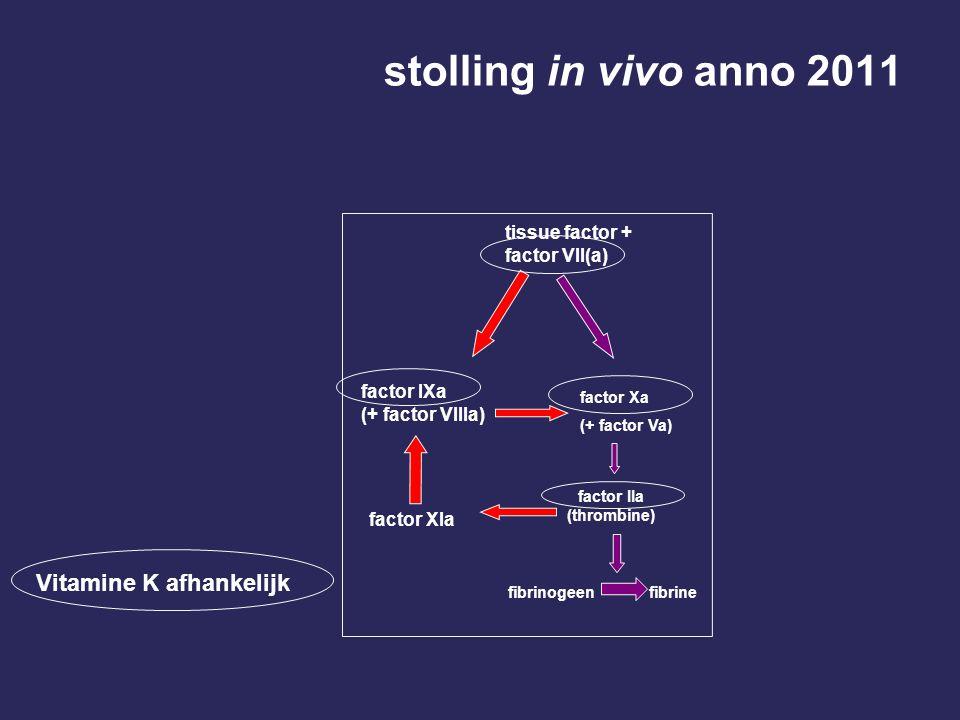 stolling in vivo anno 2011 Vitamine K afhankelijk