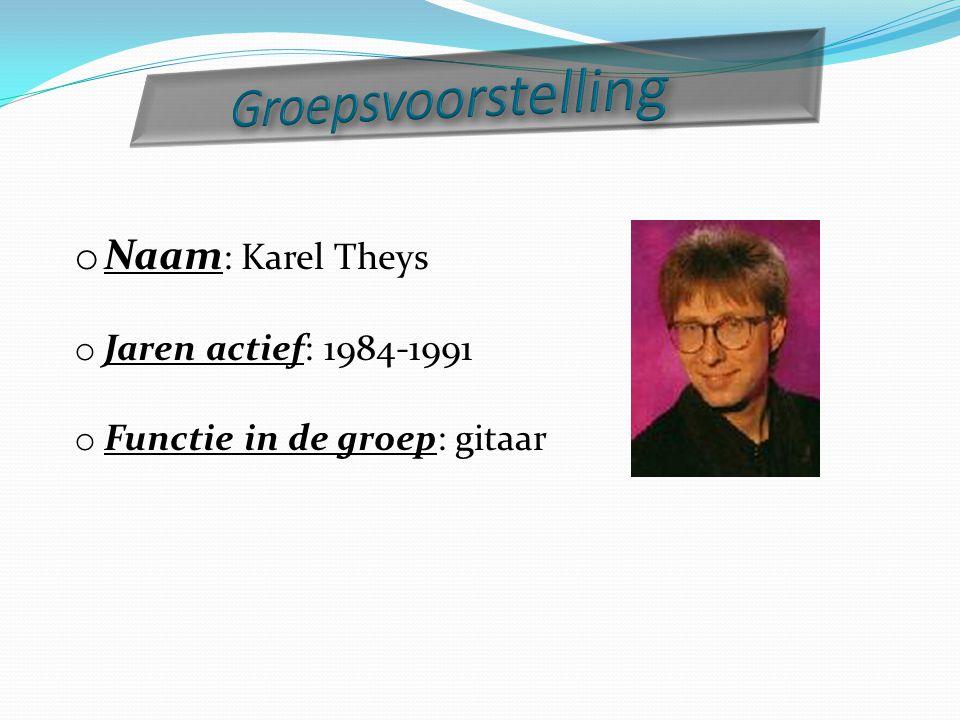 Groepsvoorstelling Naam: Karel Theys Jaren actief: 1984-1991