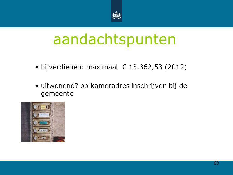 aandachtspunten bijverdienen: maximaal € 13.362,53 (2012)