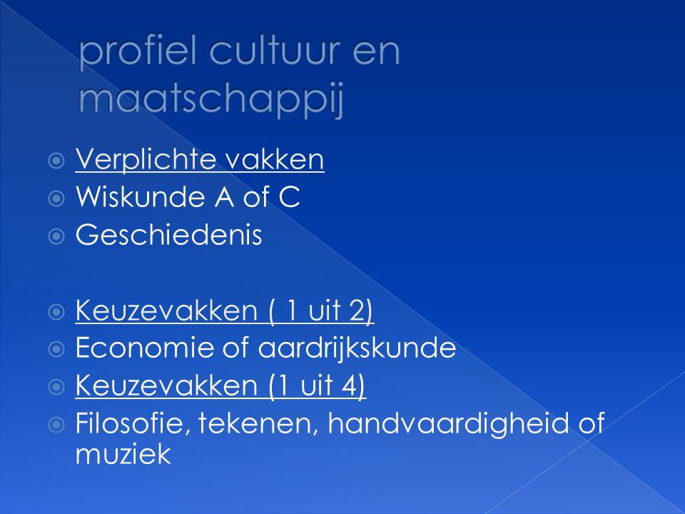 profiel cultuur en maatschappij