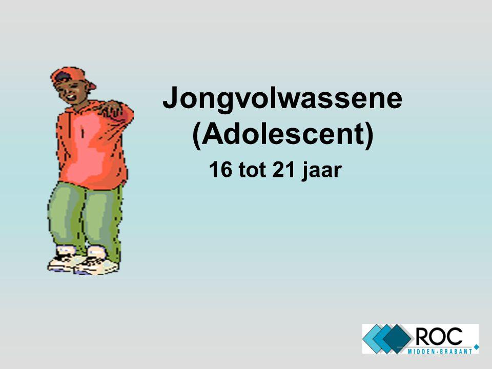Jongvolwassene (Adolescent)