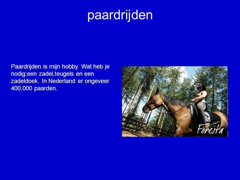 paardrijden Paardrijden is mijn hobby. Wat heb je nodig:een zadel,teugels en een zadeldoek.