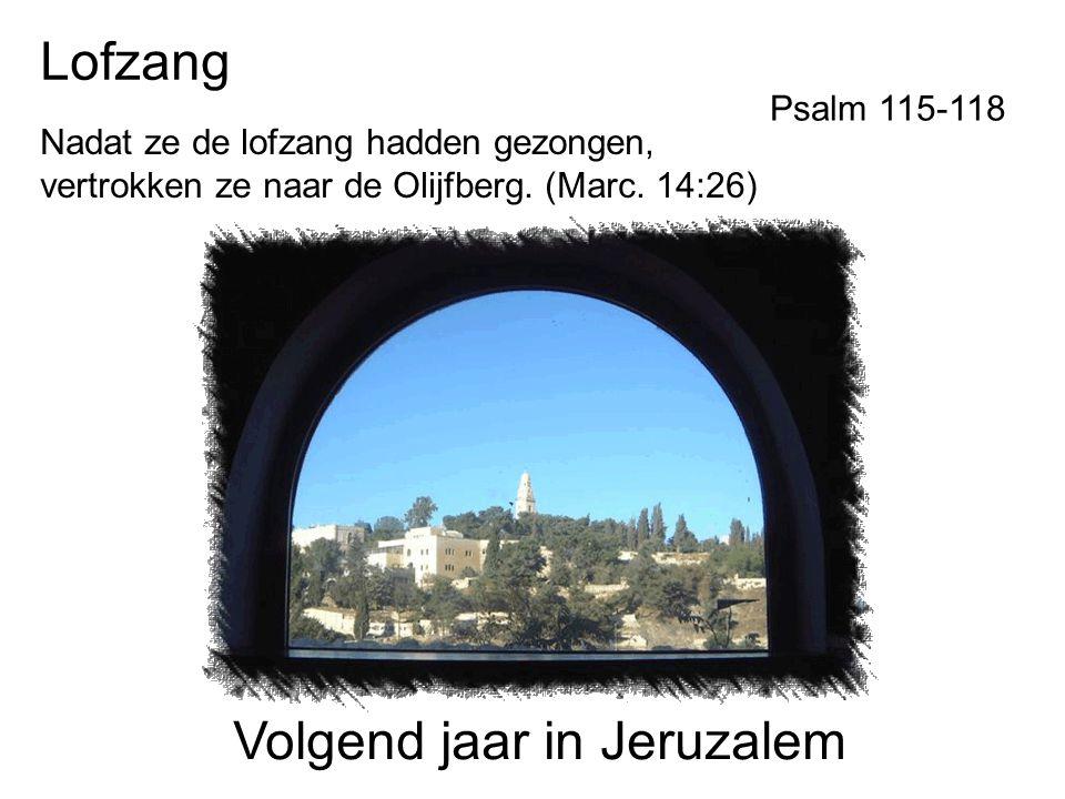 Volgend jaar in Jeruzalem