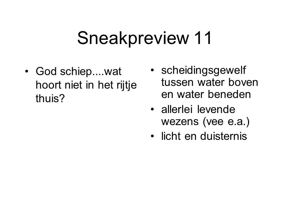 Sneakpreview 11 God schiep....wat hoort niet in het rijtje thuis