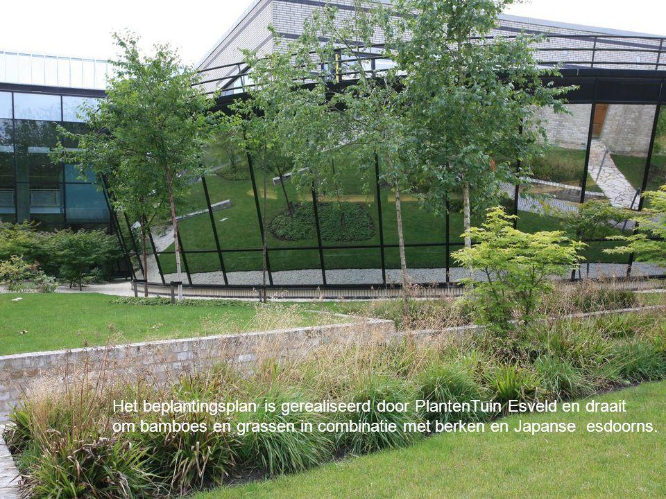 Het beplantingsplan is gerealiseerd door PlantenTuin Esveld en draait