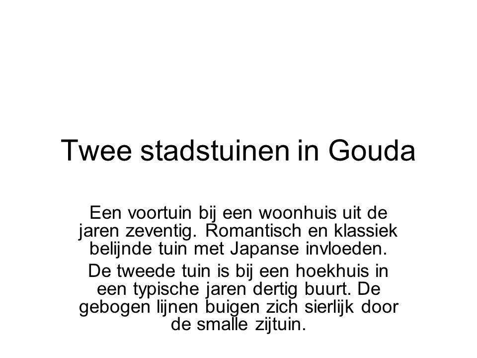 Twee stadstuinen in Gouda