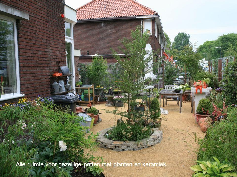 Alle ruimte voor gezellige potten met planten en keramiek