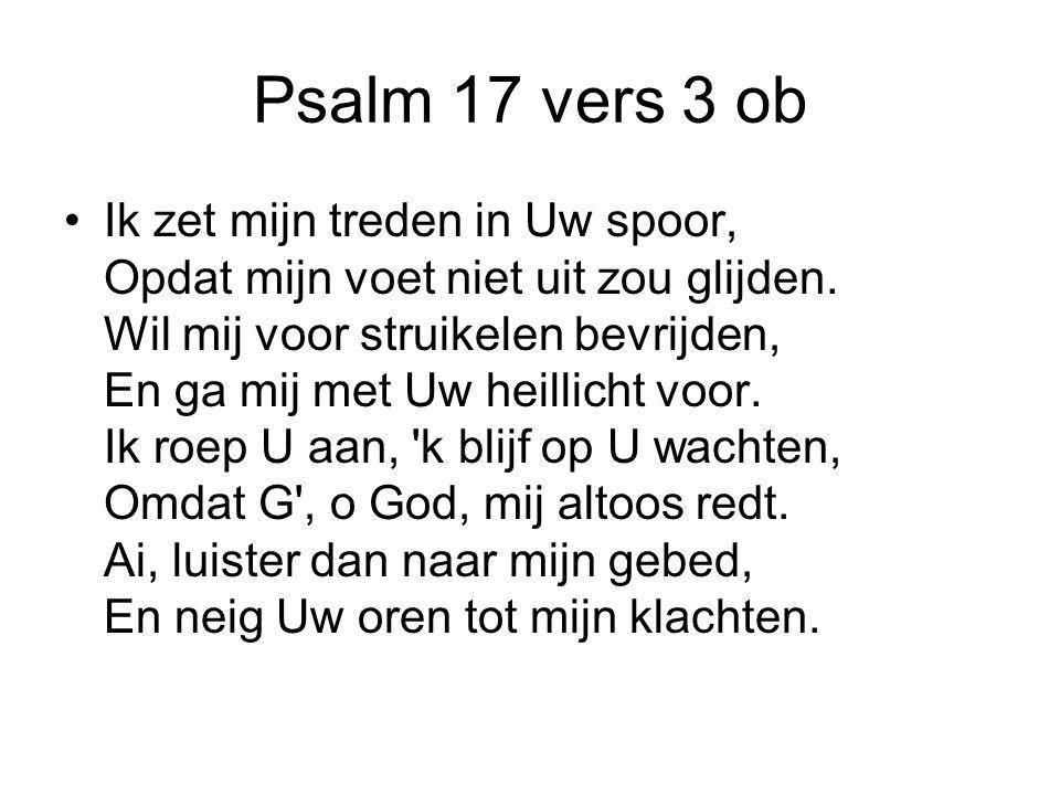 Psalm 17 vers 3 ob