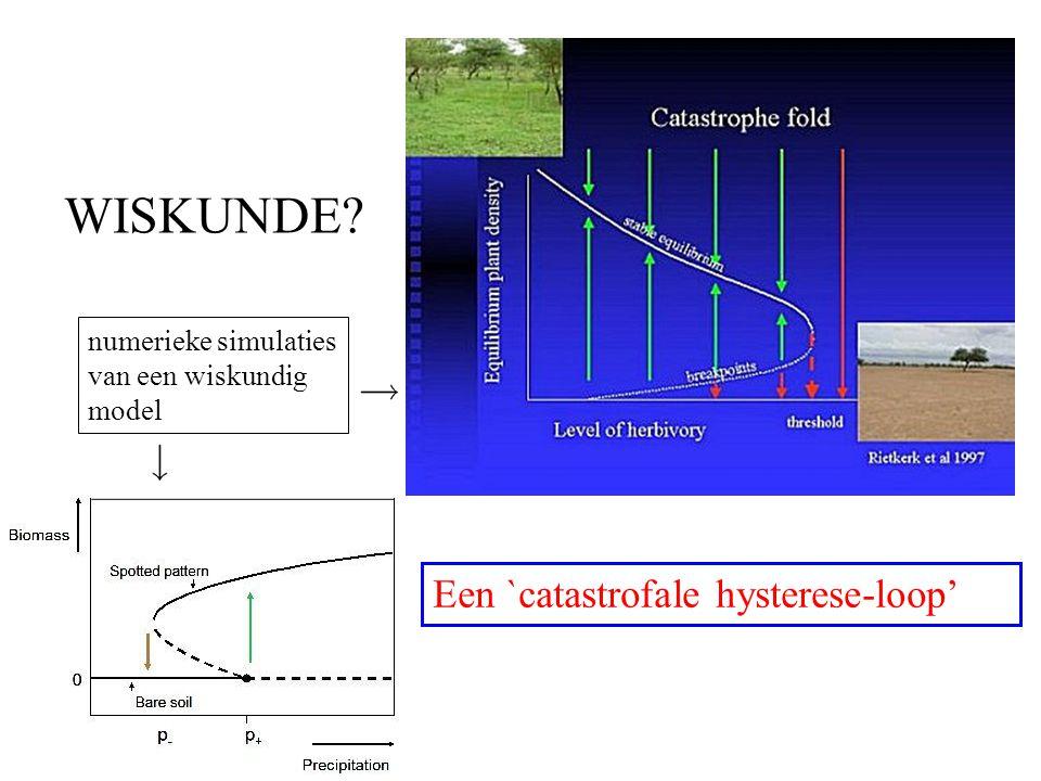 WISKUNDE Een `catastrofale hysterese-loop'