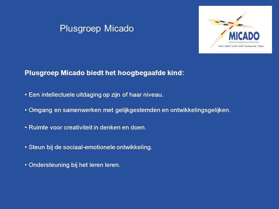 Plusgroep Micado Plusgroep Micado biedt het hoogbegaafde kind: