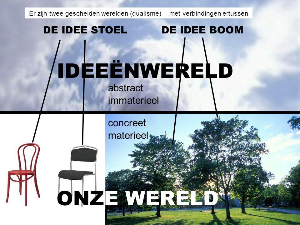 IDEEËNWERELD ONZE WERELD DE IDEE STOEL DE IDEE BOOM abstract