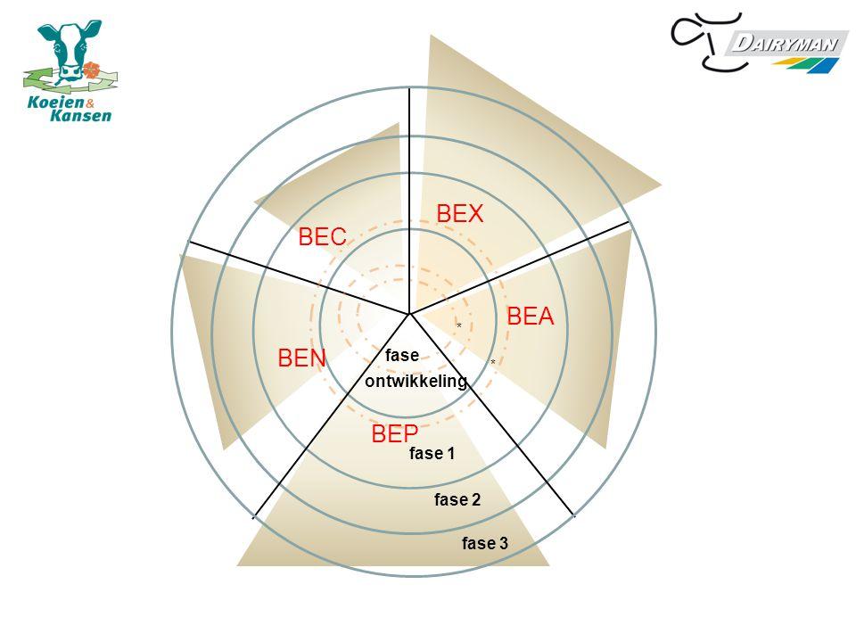 BEX BEA BEP BEN BEC ontwikkeling * fase 1 fase 2 fase 3 fase