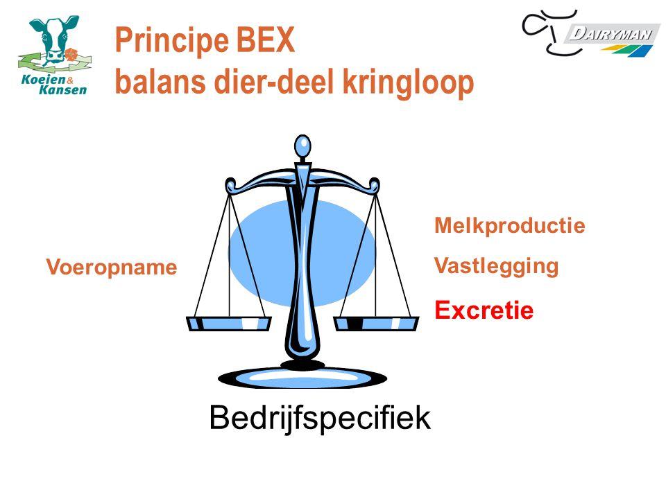 Principe BEX balans dier-deel kringloop