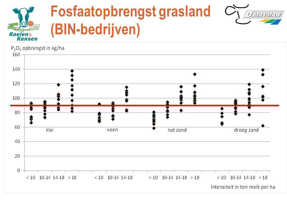 Fosfaatopbrengst grasland (BIN-bedrijven)