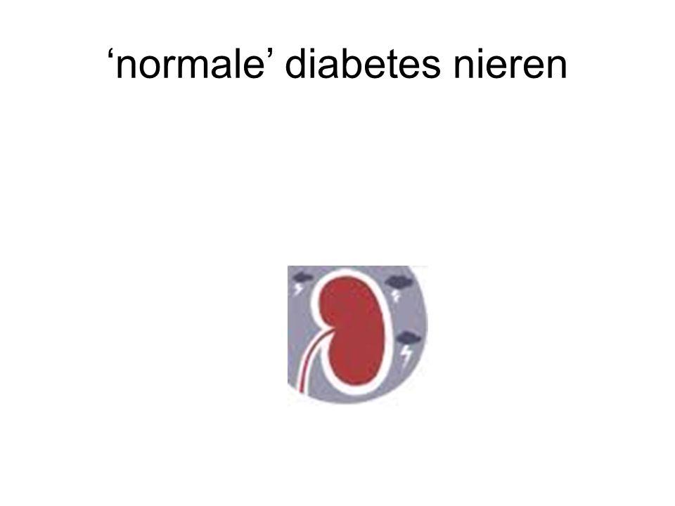 'normale' diabetes nieren