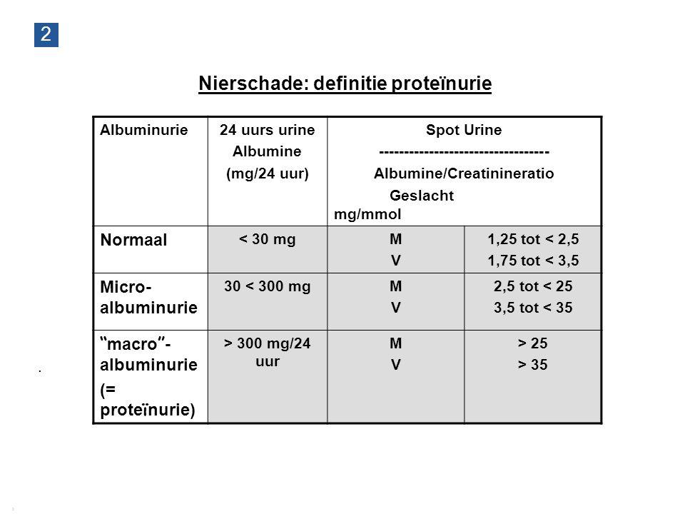 Nierschade: definitie proteïnurie