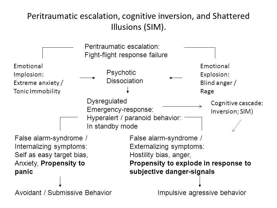 Peritraumatic escalation, cognitive inversion, and Shattered Illusions (SIM).