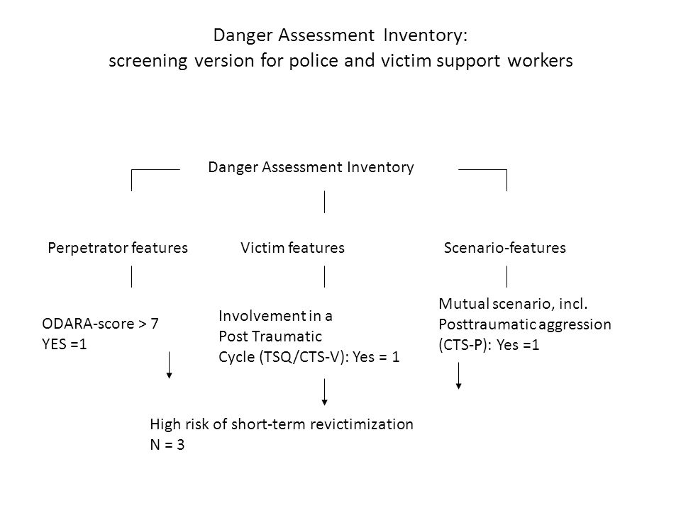 Danger Assessment Inventory: screening version for police and victim support workers