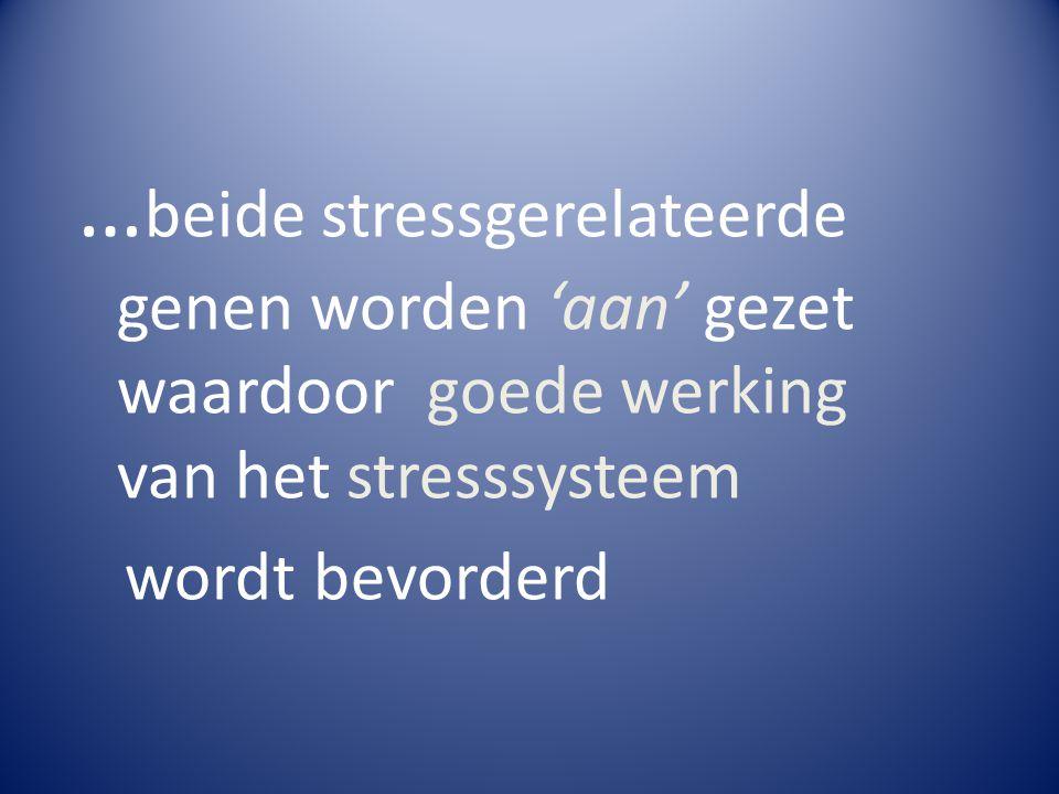…beide stressgerelateerde genen worden 'aan' gezet waardoor goede werking van het stresssysteem
