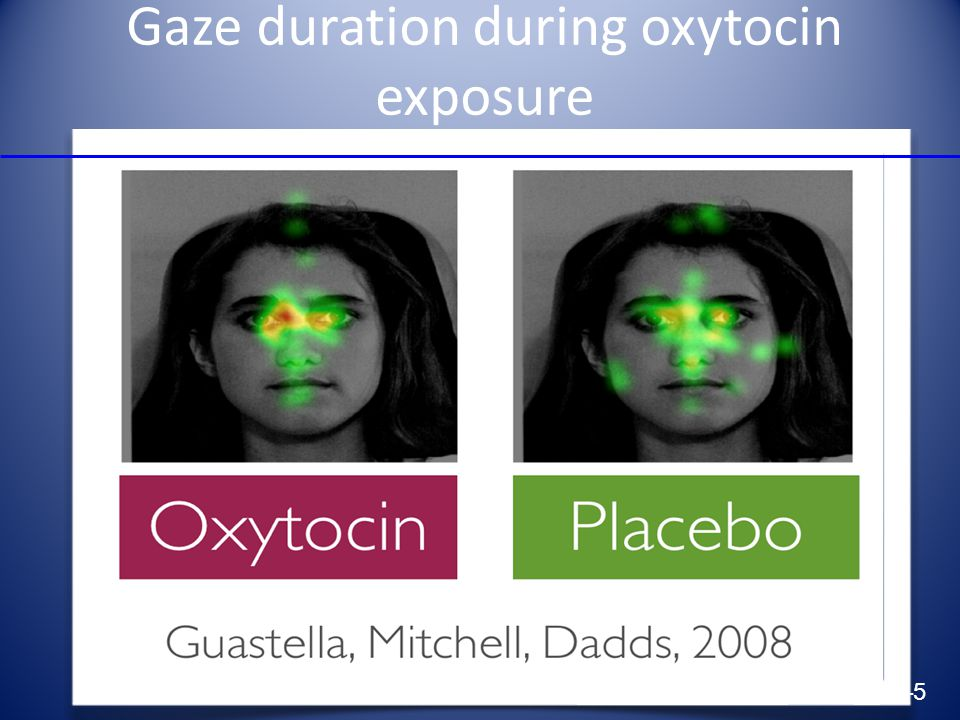 Gaze duration during oxytocin exposure